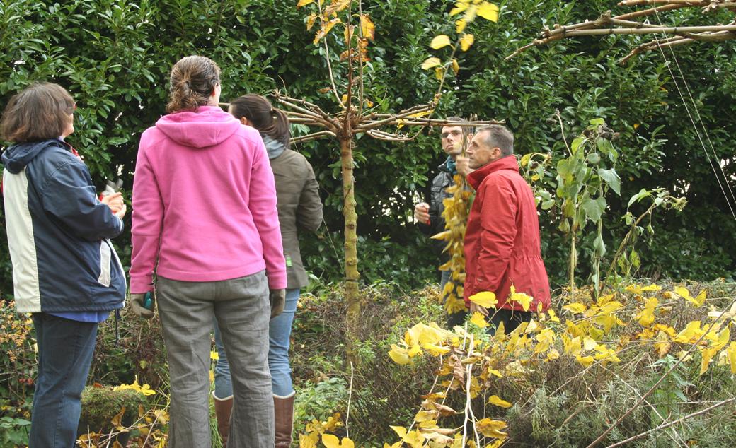 snoeicursus met cursisten aan het werk in de tuin overbeek-gardendesign