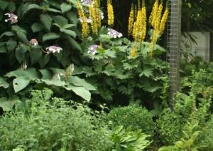 natuurlijke tuin met voldoende planten overbeek gardendesign